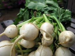Organic Baby Turnips (local)