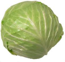 Organic Cabbage (local)