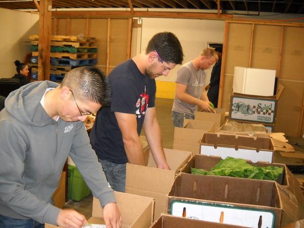 Golden Gate Organics Coming To Lamorina, California